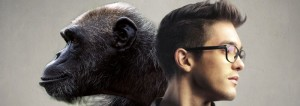 """Human - Chimp """"How Close Are We?"""""""