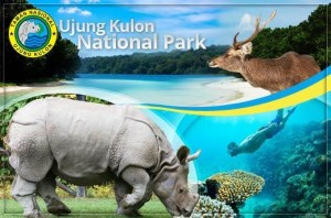national-park-ujung-kulon