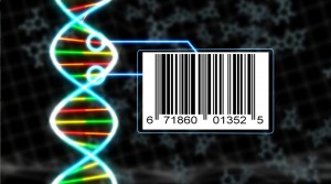 dna_barcode