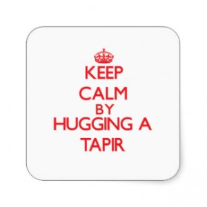 keep_calm_by_hugging_a_tapir_sticker-r1a389971b32a46fc881600140991d7ba_v9wf3_8byvr_324