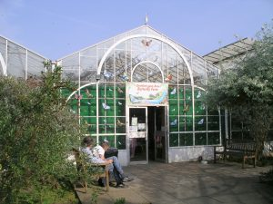 stratford_butterfly_farm_entrance_14a07