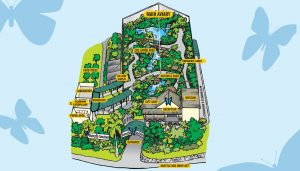 butterfly-sanctuary-map